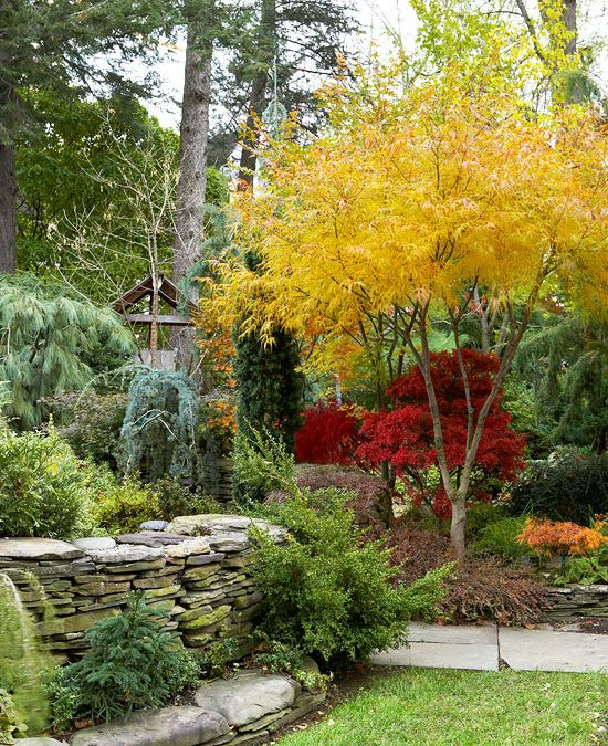 Color Landscaping Rocky Hill CT